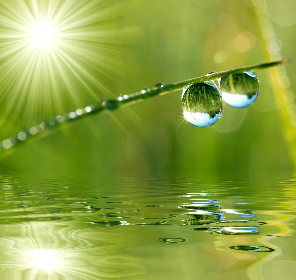 images zen gratuitesZen Water Images